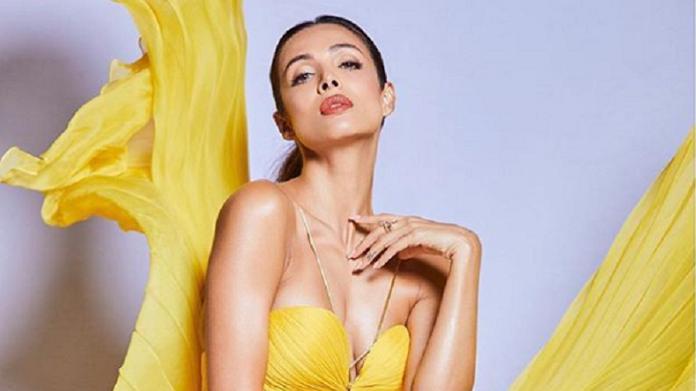 malaika-arora-bollywood-hot-actress-pics